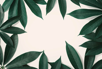 green leaf pattern border on white background