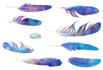 collection of feathers with watercolors texture