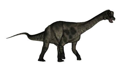 Antarctosaurus dinosaur - 3D render