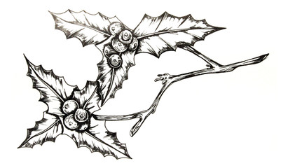 Hand drawn Holly branch with berries by ink pen
