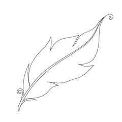 Isolated black outline monochrome feather of bird on white background. Curve lines. Page of coloring book.