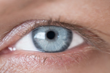 Blue human eye. Beauty macro closeup woman's eye blinking