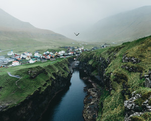 Bird flying above gorge in Faroese village