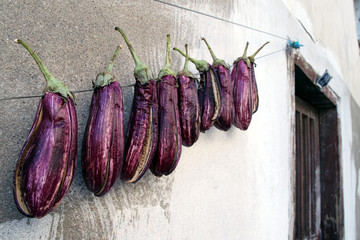 Eggplants was hanged on line for drying. It is a traditional style to make dry and cook afterwards
