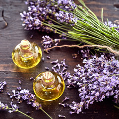 Freshly harvested lavender with essential oil