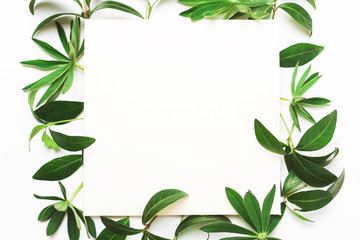 Frame of green leaves, letterhead for writing text.