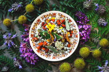 A Dish of Mixed Flowers and Seeds on a Bed of Flora