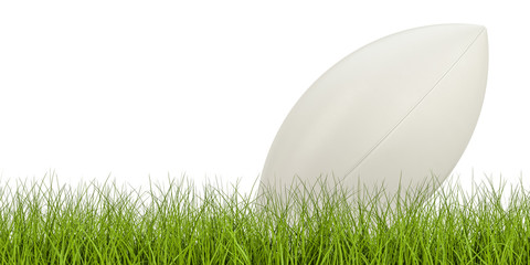 Rugby ball concept on the grass, 3D rendering