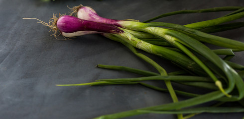 purple and green spring onions on a gray counter