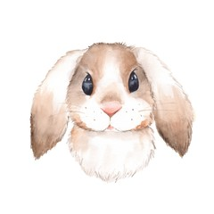 Cute rabbit. Watercolor illustration. Isolated on white background