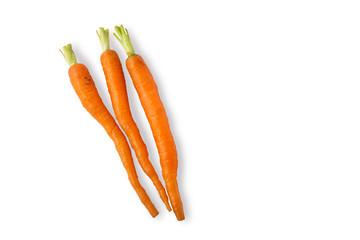 Orange Baby Carrots on White Background