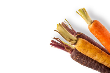 Baby Rainbow Carrots on White Background