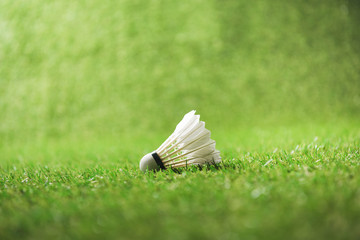 Close-up view of white shuttlecock for badminton on green grass