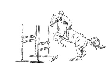 Sketch of Man rider on bay horse jumping in vector.