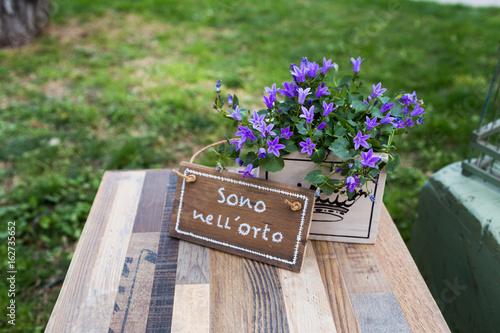 Decorazioni In Legno Per Giardino : Piante grasse e rare al perugia flower show