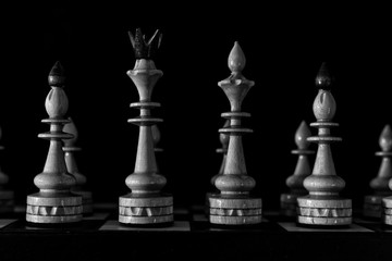chess pieces for playing on a board