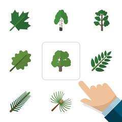 Flat Icon Ecology Set Of Timber, Oaken, Alder And Other Vector Objects. Also Includes Leaves, Park, Rosemary Elements.