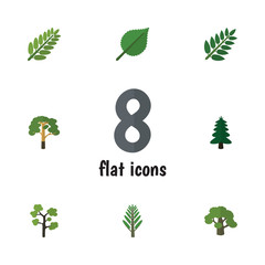Flat Icon Natural Set Of Wood, Garden, Jungle And Other Vector Objects. Also Includes Alder, Forest, Wood Elements.
