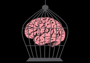 Caged brain