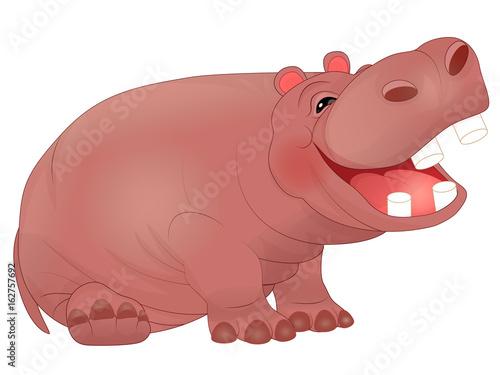 cartoon laughing hippopotamus fotolia com の ストック画像と