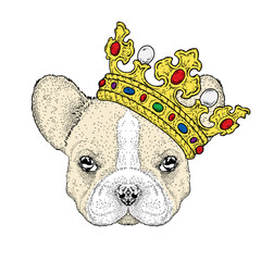 Lovely puppy in the crown. Vetch illustration for postcard or poster, print on clothes. Pedigree dog. Bulldog.