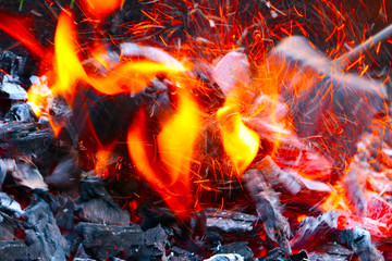 Charcoal and the open flame of fire in the wild