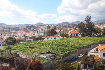 Seilbahn Fahrt von Funchal nach Monte, Madeira