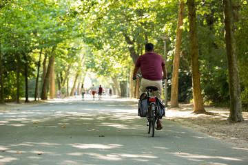 Man biking in a sunny Vondelpark