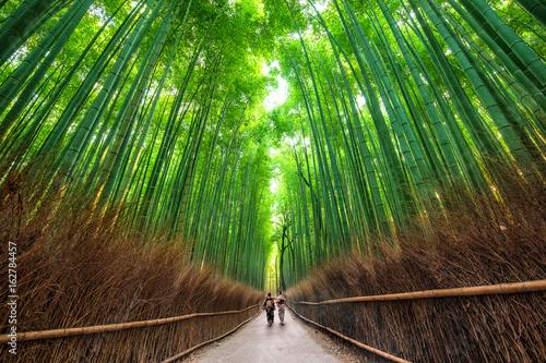 Fototapete Sagano Path, Kyoto, Japan