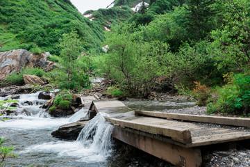 Fallen Bridge on forest trail
