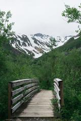 Bridge into the Mountains
