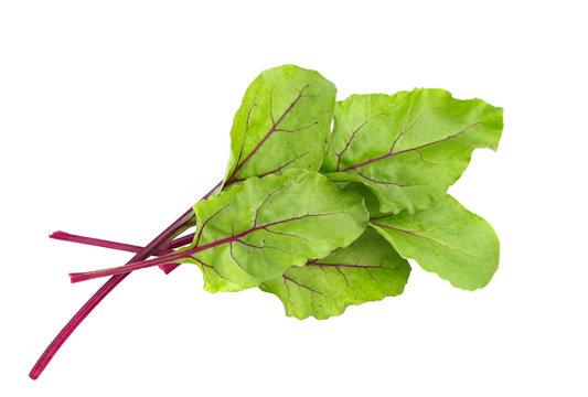 Beet leaves. Beetroot leaves, fresh beet leaf.