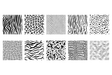 vector set of seamless black and white animal patterns
