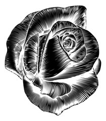 Vinage Rose Flower Etching Engraved Woodcut