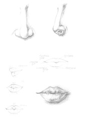 Hand drawn human nose and lips icon illustration, brush drawing grey sign, original hand-painted face part isolated on white background. Academic drawing sketch