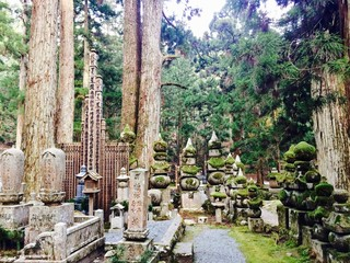 Mount Koya (Koyasan) in the Wakayama Prefecture in Japan nearby Osaka, an UNESCO World Heritage Site with massive trees, numerous shrines and an ancient stone cemetery with moss for buddhism pilgrims Wall mural