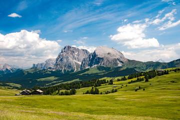 Dolomiti - Alpe di Siusi  - Sassolungo e Sassopiatto - Italy