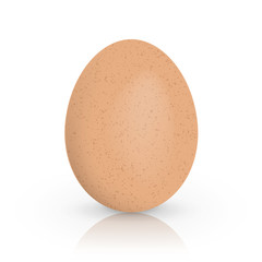 Single brown chicken egg isolated on white background. Vector illustration.