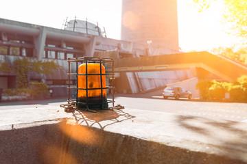 Signal Leuchte Sicherheit