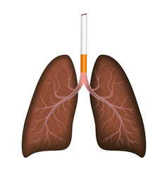 smoker : a cigarette destroy lung