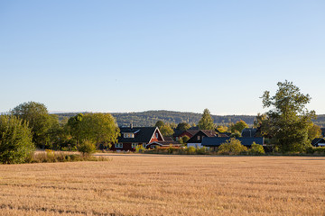 Swedish traditional house behind field and sunset light