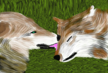 Wolves in Love (O813)