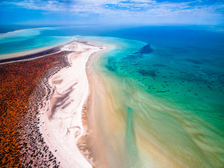 Shell Beach - Shark Bay - Western Australia - SWD0019