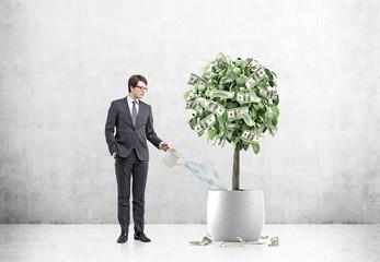 Businessman watering a dollar tree