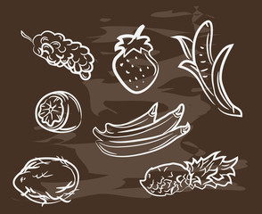 Collection of hand-drawn fruit on blackboard. Retro vintage style .