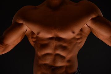 Fitness torso