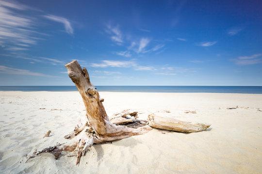 Morze Bałtyckie pusta plaza i niebieskie niebo