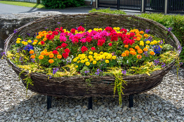 Large flower bed in the form of a basket