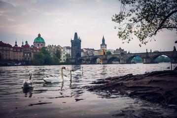 Beautiful scenic morning in Prague, Cezch Republic