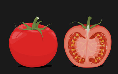 Tomato and its vertical cut piece on front view